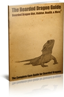 Bearded Dragon Guide - eBook PDF Format