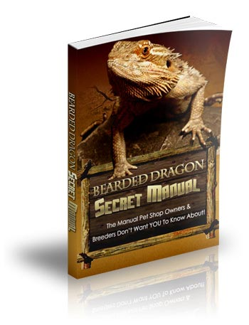 Bearded Dragons the Essenial Guide